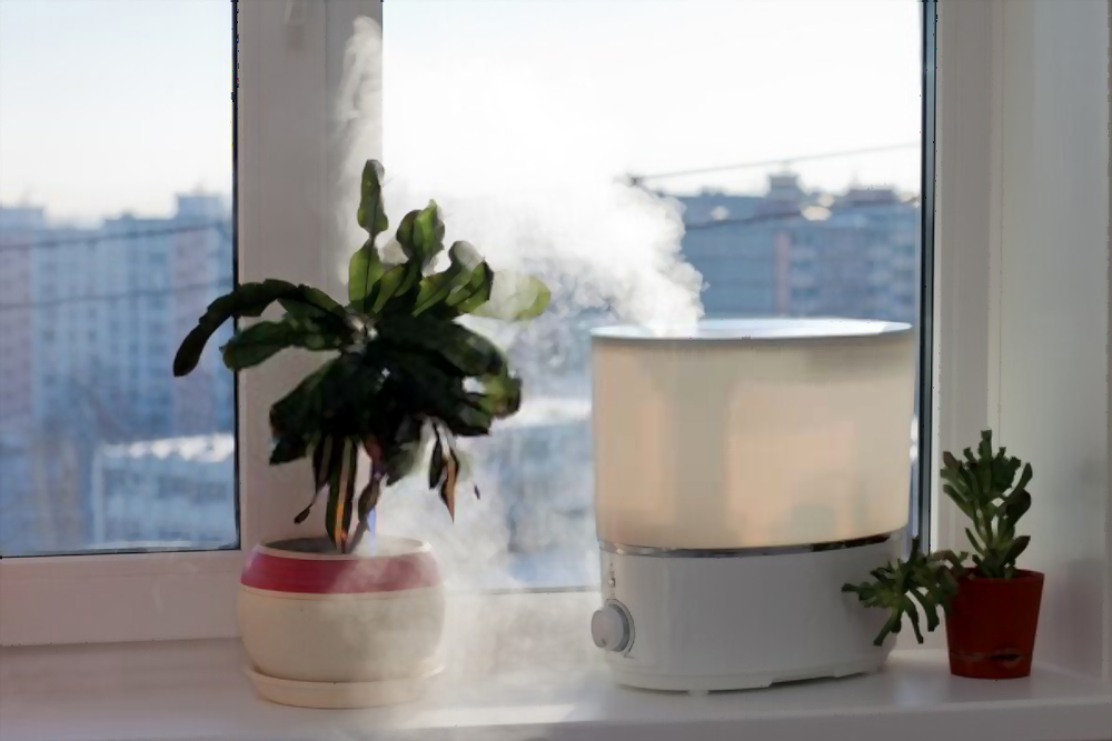 Best Humidifier For 1000 Square Feet